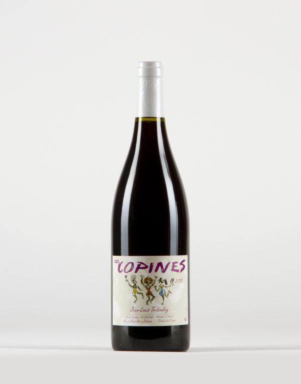 Les Copines Vin de France, Domaine Jean Louis Tribouley