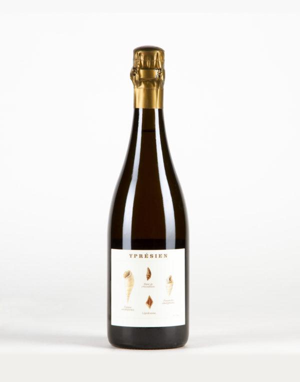 Ypresien Champagne, Champagne Legrand Latour
